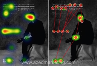 Cannes eye-tracking comparison